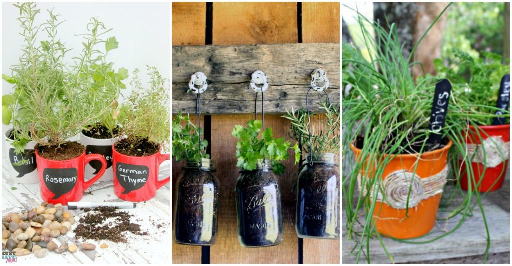 Planting Herbs: Designs for Your Spring Garden